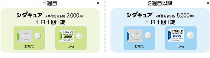 10.5.2.シダキュア