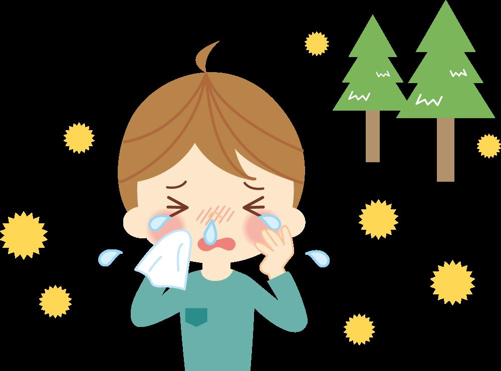 スギ花粉症の症状